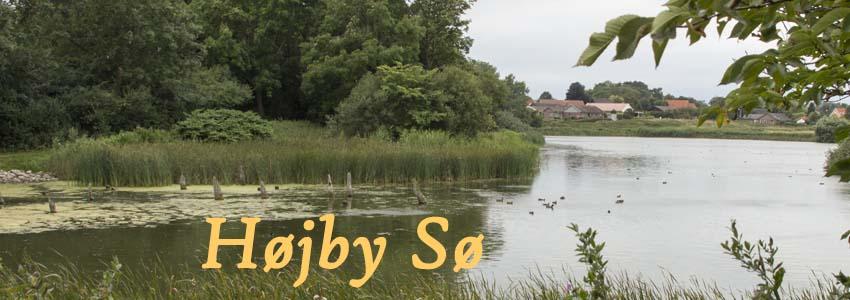 Højby Sø forside